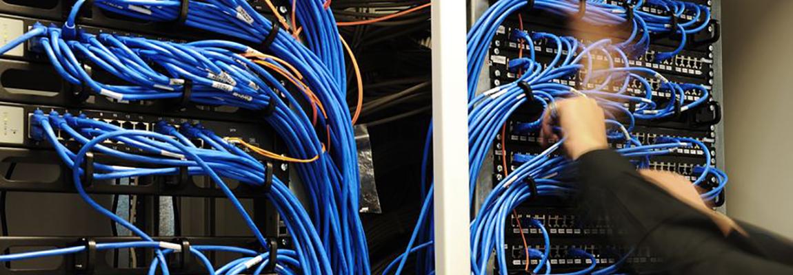 Net Service - I servizi